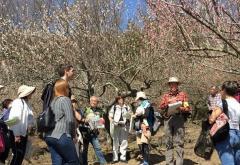 [Mon. Feb. 27th] Mini Geotour in English @Plum Grove Park on Mt. Tsukuba