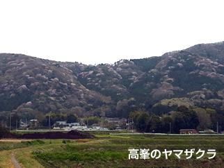1 高峯・富谷山