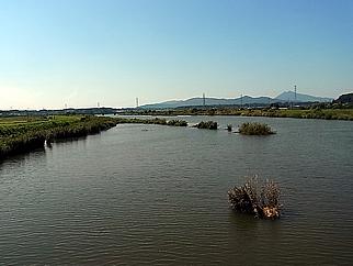 17 高浜・石岡