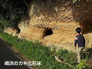 19 崎浜・川尻