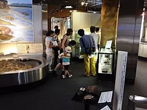 『地質標本館館内ツアー(1)』の画像