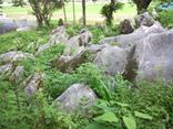 『滝野不動堂の石灰岩塊』の画像