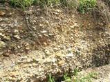 『古鬼怒川の礫質堆積物』の画像