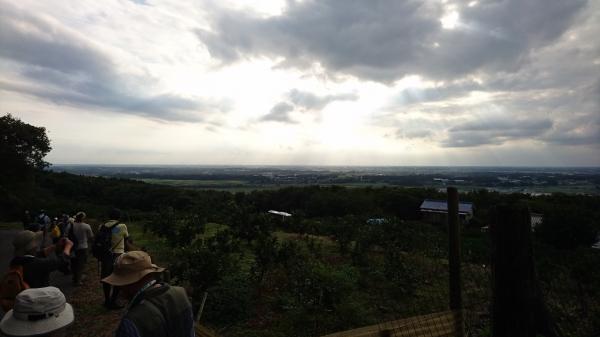 『みかん園から見える関東平野』の画像