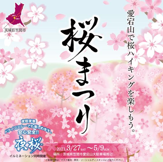 『あたご山桜まつり』の画像